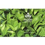 Painted green leaf background rectangle Maile Organics Aroma Mist process color label